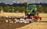 Changing the status of agricultural land